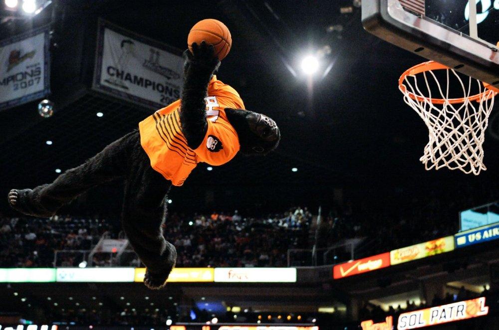 1-gorilla-mascot-phoenix-suns 2.jpg